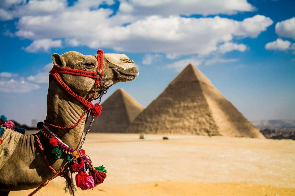 Надежное агентство для покупки туров в Египет